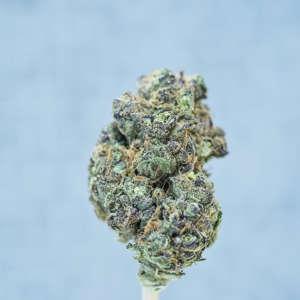 Marijuana Delivery Las Vegas